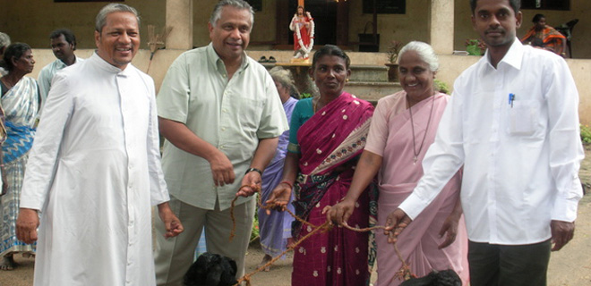 Distributing goats to 100 widows of the Movement with help mobilized by Fr.Britto Berchmans