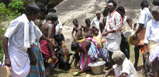Hindu Puthirai Vannars celebrating their traditional feast to their gods of their community.